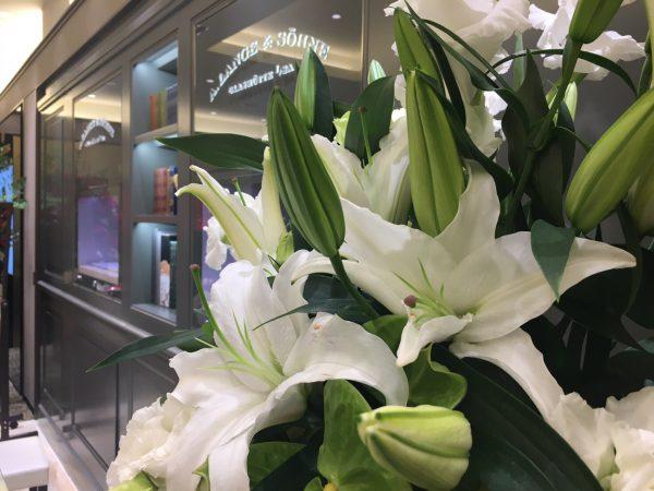 たくさんの開店祝いのお花、ありがとうございました。