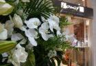 素敵な開店祝いのお花をありがとうございました。